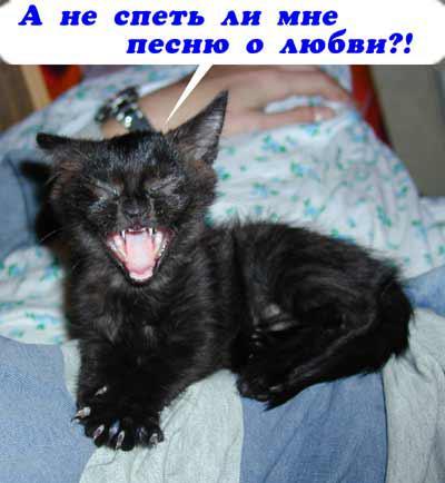 post-20132-1404209262,6872_thumb.jpg