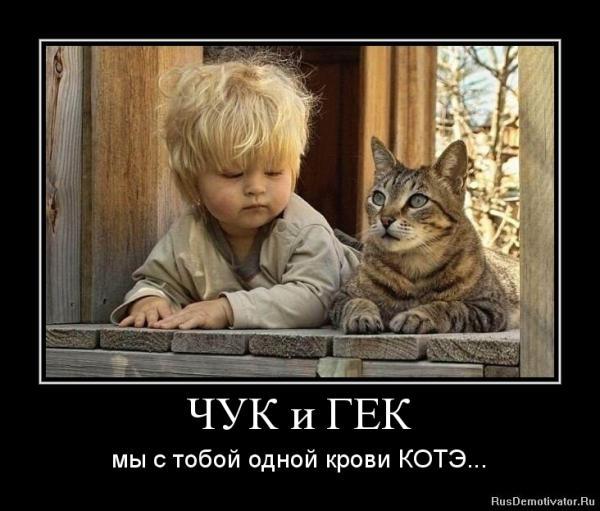 post-25573-1404218444,5359_thumb.jpg