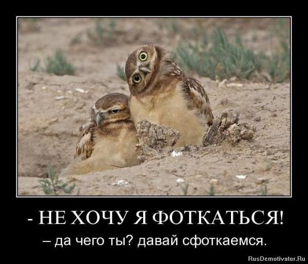 post-25573-1404218505,4982_thumb.jpg