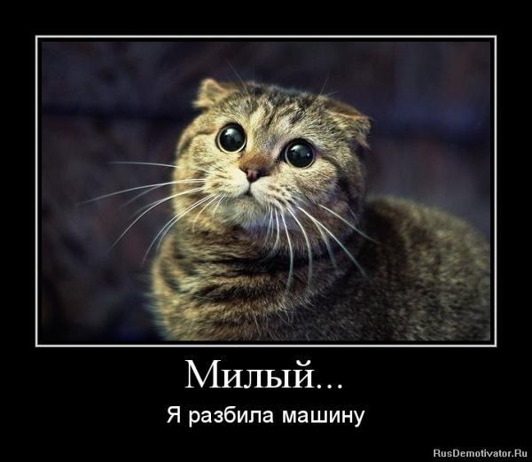 post-25573-1404218505,5555_thumb.jpg