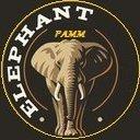 ZZ Elephant