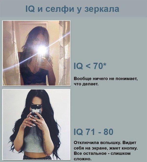 iq-1.jpg