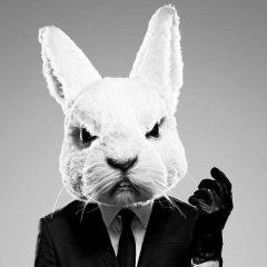 aka White Rabbit