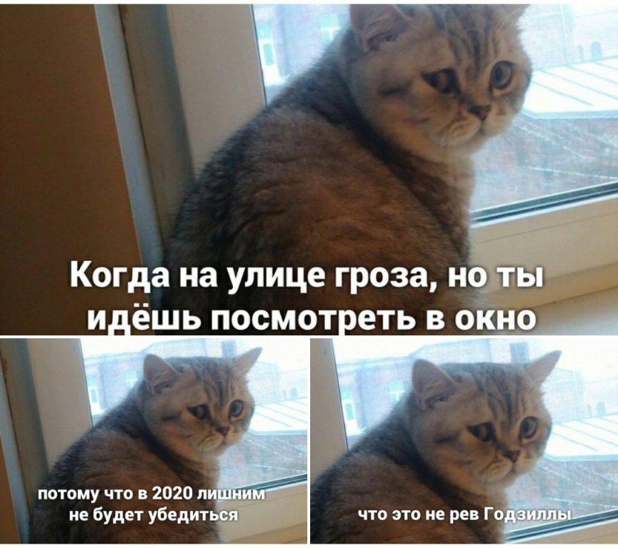 Screenshot_20200807-002627_VK.jpg